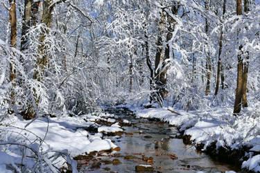 Winter Stream Crossing