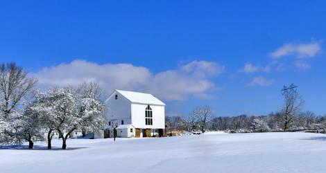 Foaling Barn in Winter