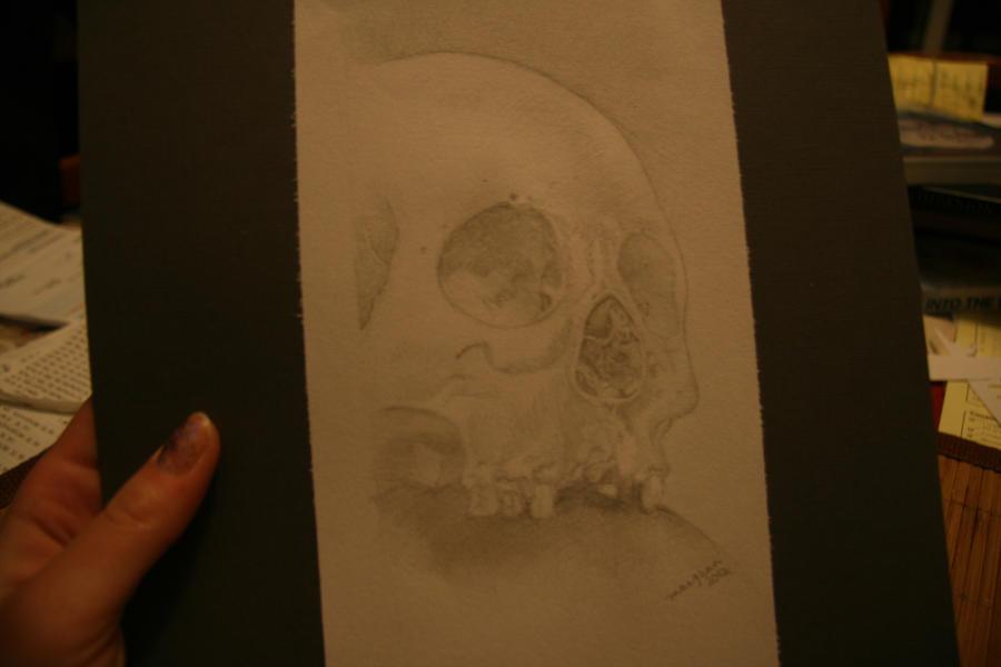 skull by mcm1011
