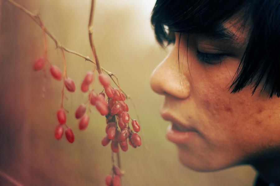 berries by Adrienneknott