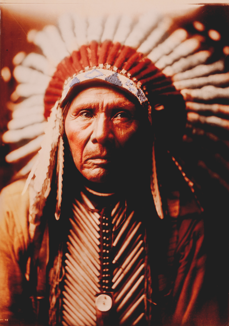 Native American Chief by Livadialilacs