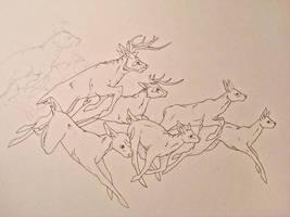 Deer sketch HELP? by Mystalia