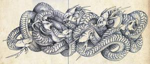 coils by Mystalia