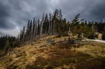 Stock 86 (Stormy Landscape)