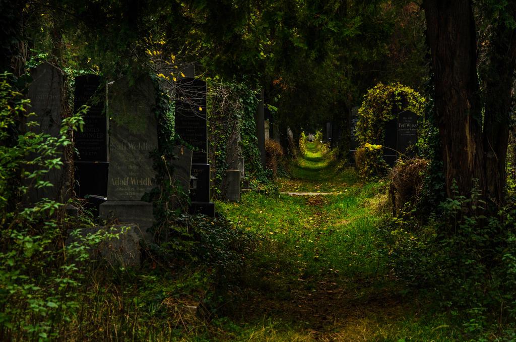 Stock 119 (Cemetery 1/4) by Einheit00