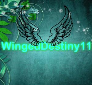 WingedDestiny11's Profile Picture
