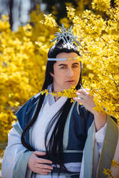 The Untamed : Lan Xichen
