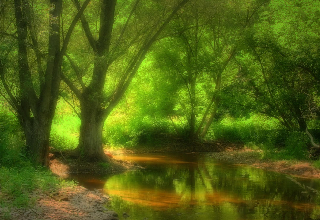 forest dreamscape by b jammin on deviantart