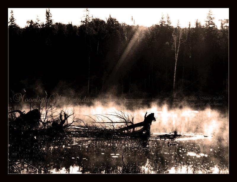 Misty Lake by MoonlightMysteria