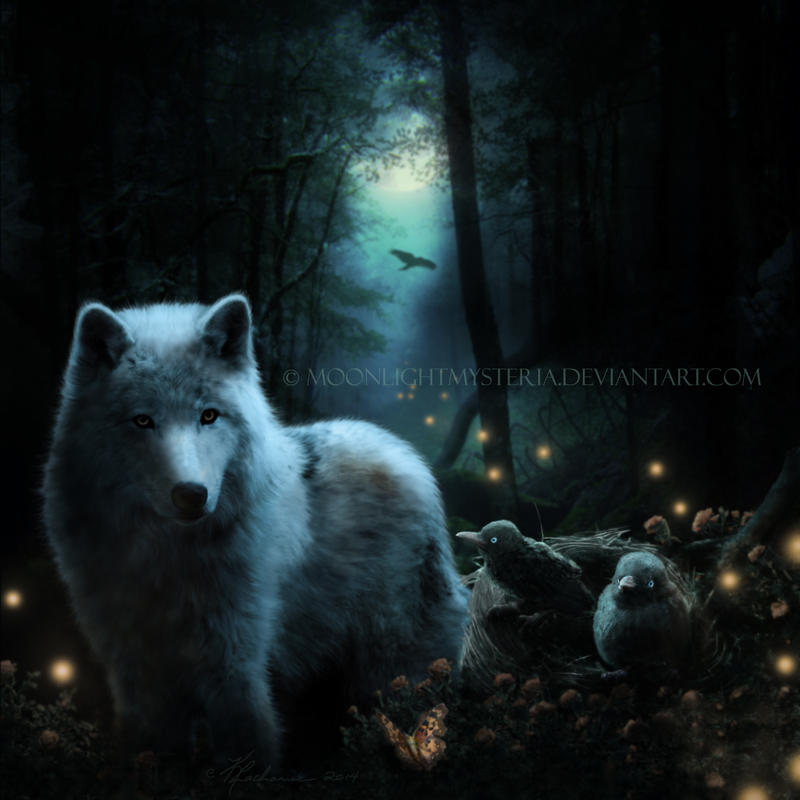 Guardian of the Night by MoonlightMysteria