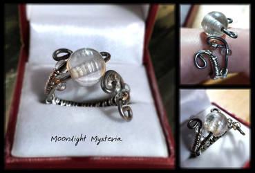 Winter's Charm by MoonlightMysteria