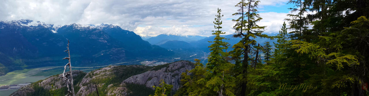 View of Squamish Atop a Mountain