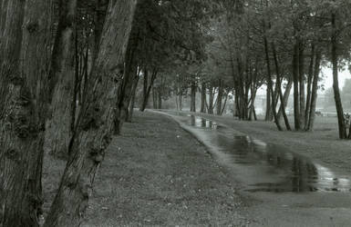 Where the path turns..