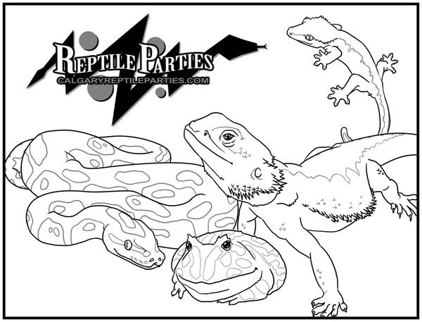 Coloring page Reptile Parties by SingleServal on DeviantArt