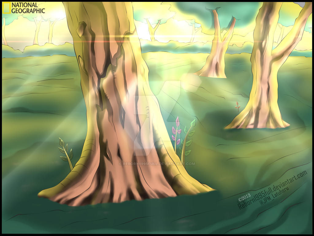 FOREST~ by Reborn1995full