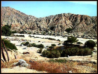 Ride In The Desert by darlingina