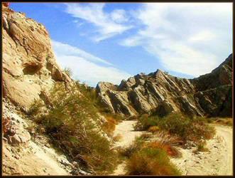 Desert Adventure by darlingina