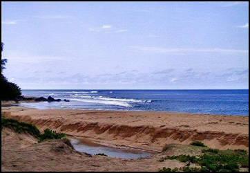 Beach_06 by darlingina