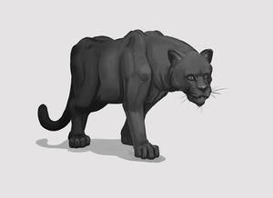 Panther Drawing