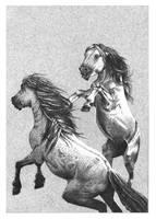 Horses for LOSMIOS by Sahlav