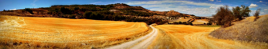 Landscape La Peraleja, Spain