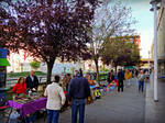 Rastrillo Vecinos Ferrol, Spain