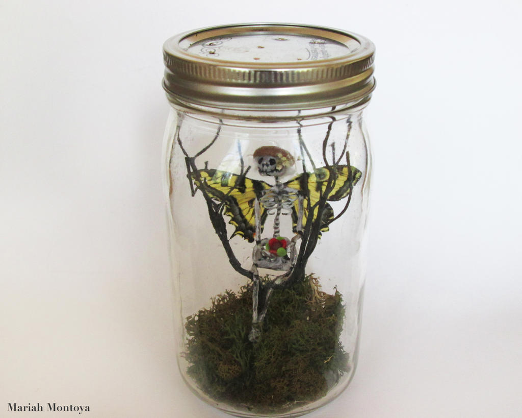 real fairies in a jar alive wwwpixsharkcom images