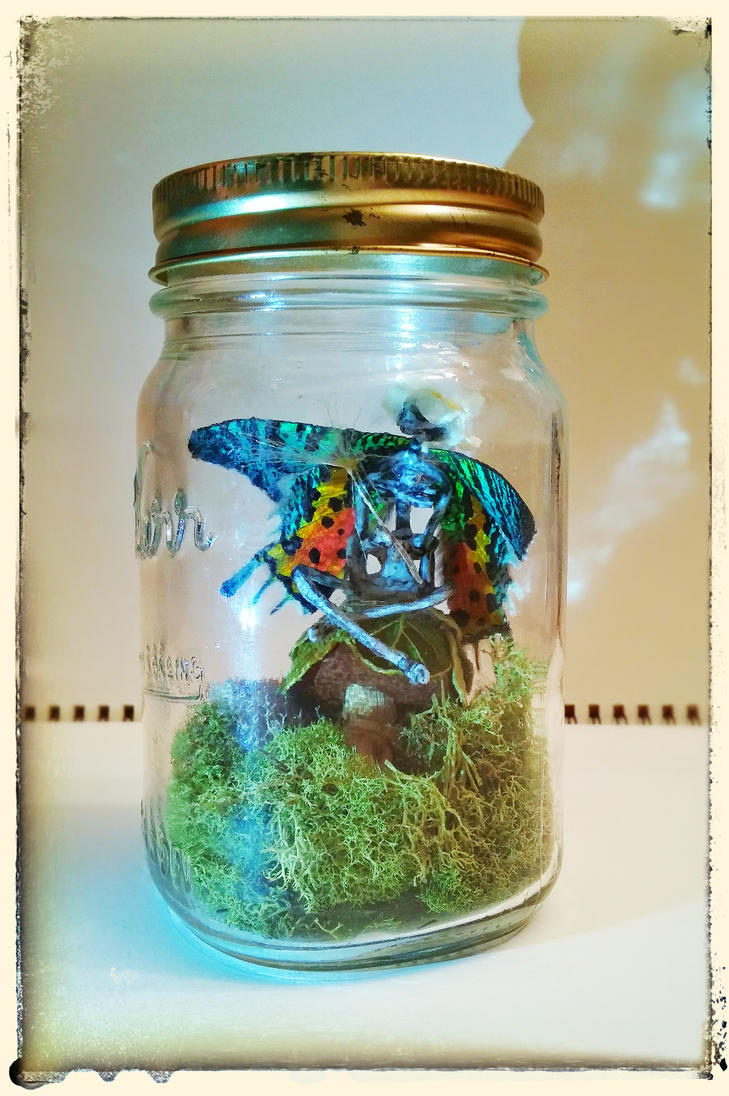 Fairy In A Jar - Iris (Made With Real Wings) by yuuyami-artist