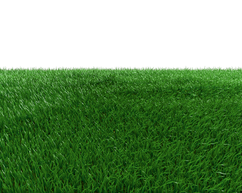 Grass Field Png by dabbex30 on DeviantArt
