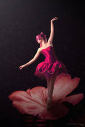 Ballerina by cha-ji