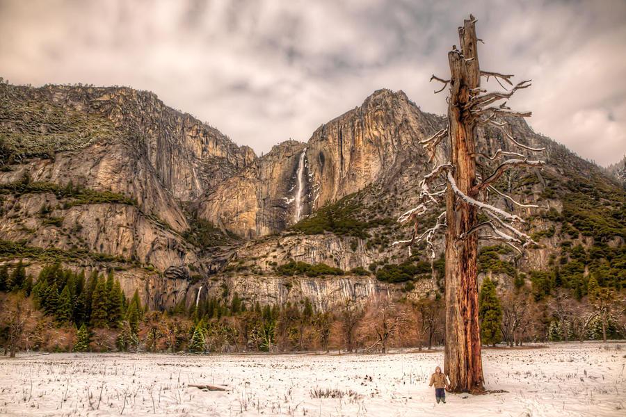 Alive in Yosemite by LeashaHooker