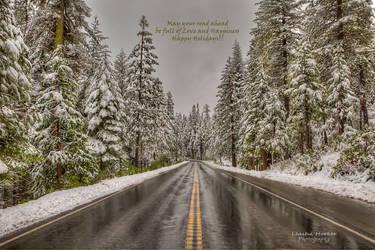 Seasons Greetings by LeashaHooker