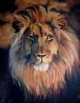 lion portrait by Ankaraven