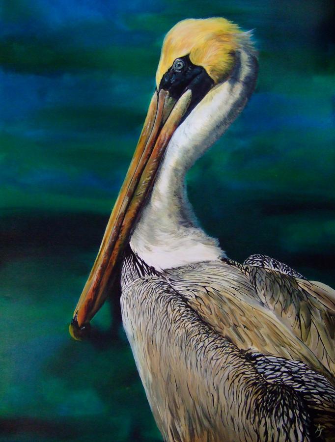 pelican by Ankaraven