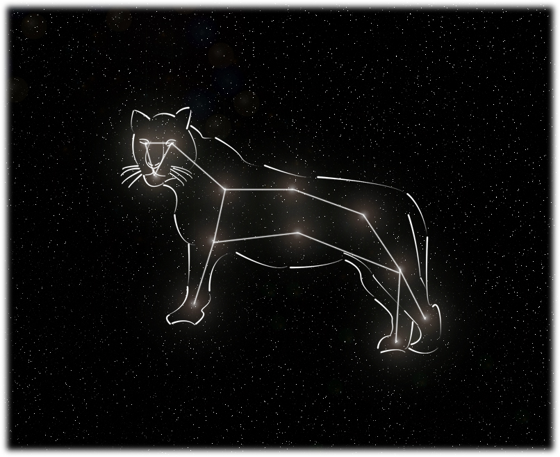 Tiger Constellation picture by ~paliden42