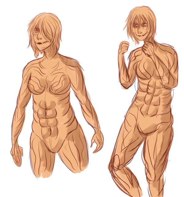 Attack on Titan All Titan Types Snk Female Type Titan by