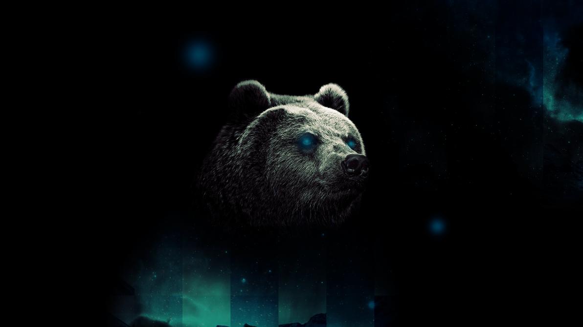 Cool Bear Wallpaper By Tooyp Bears