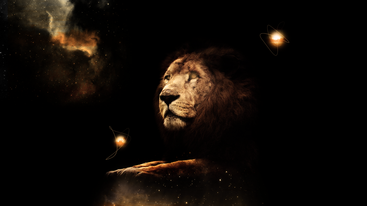 Best Wallpaper Night Lion - lion_wallpaper_hd_by_tooyp-d6cl9th  Perfect Image Reference-152814.png