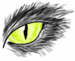 Cat eye by Seferia