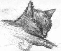 Caly when she was a kitten by Seferia