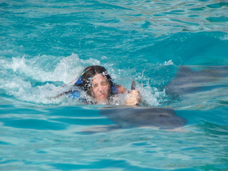 Jenna can't ride dolphin by Seferia