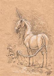 Unicorn drawing by Noukah