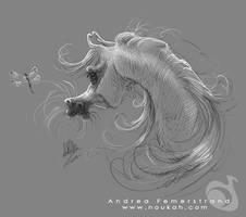 Sketch: Arabian horse by Noukah