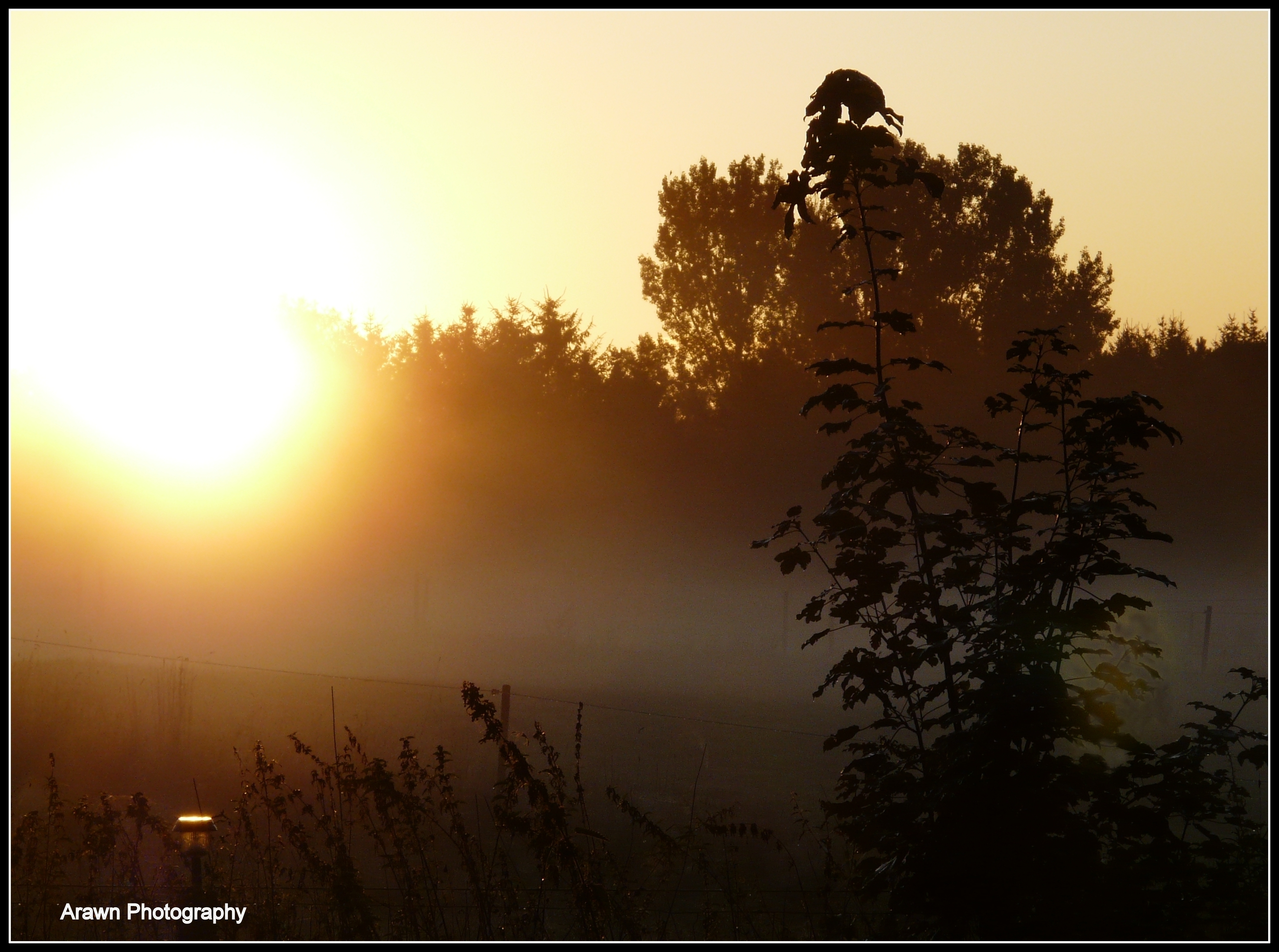 Morning has Broken by Arawn-Photography