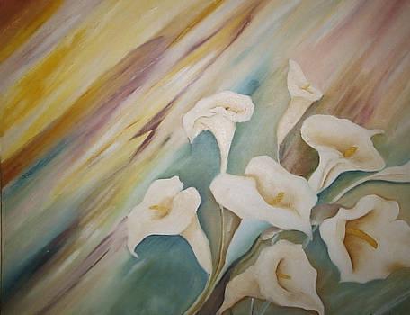 Calla lily in celebration