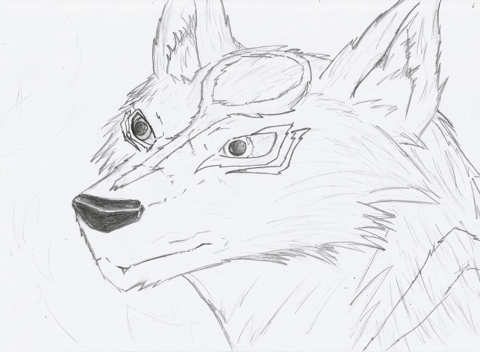 Amaterasu portrait scetch by DestinySpider