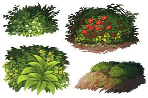plant practice