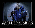 Garrus Motivational