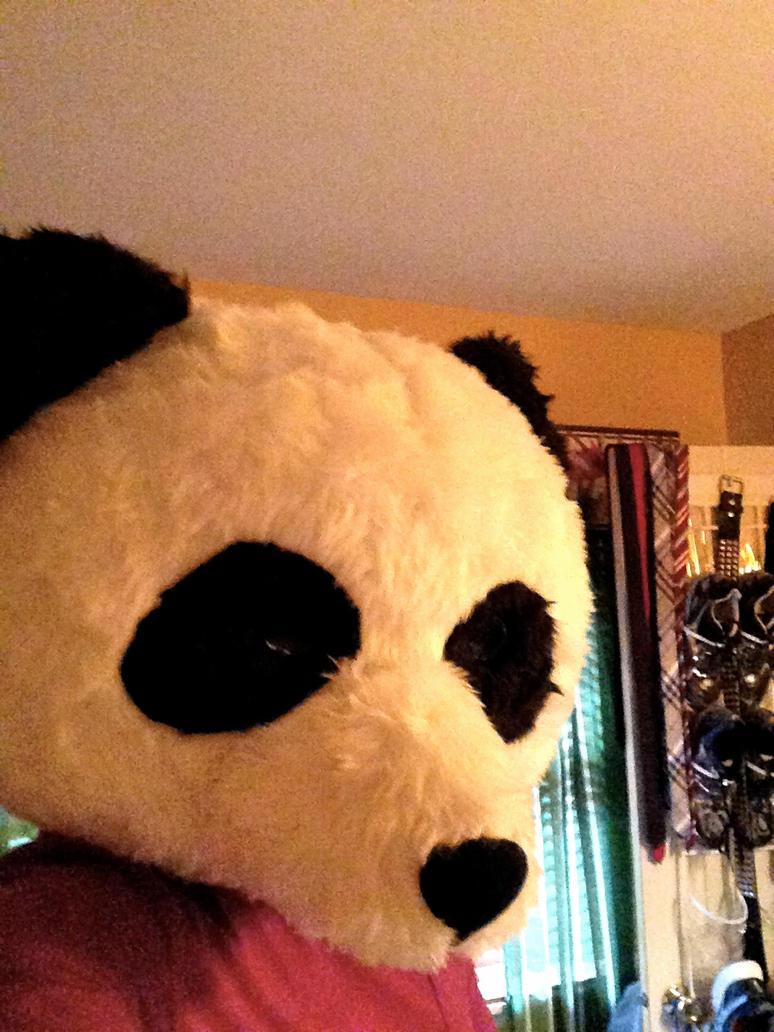 Panda Selfie by RunnerGuy13
