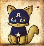 Captain Kittymerica